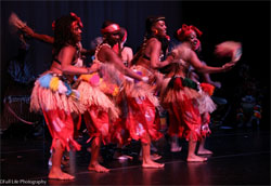 Delou Africa Dance Ensemble, Inc.